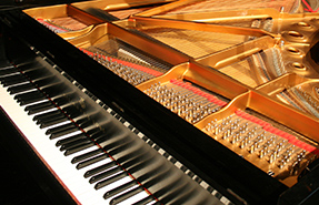 Washington International Piano Festival (2009)